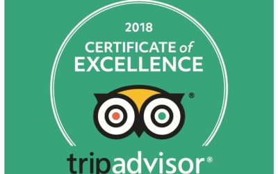 TripAdvisor 2018 Certificate of Excellence for DCMA